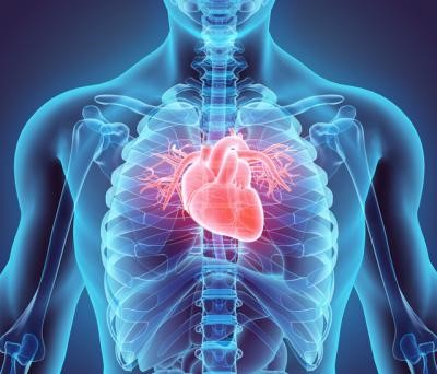 MAGIC Exercise relieves Heart and Blood disorders.